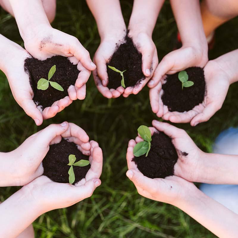 Natur- und Umweltpädagogik